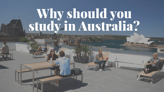 Why should you study in Australia? 5